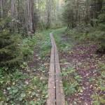 Vaisakko nature trail